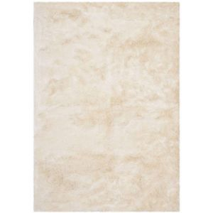 Contemporary Accent Rug, SG511